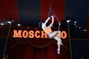 Moschino_Runway_show (36)