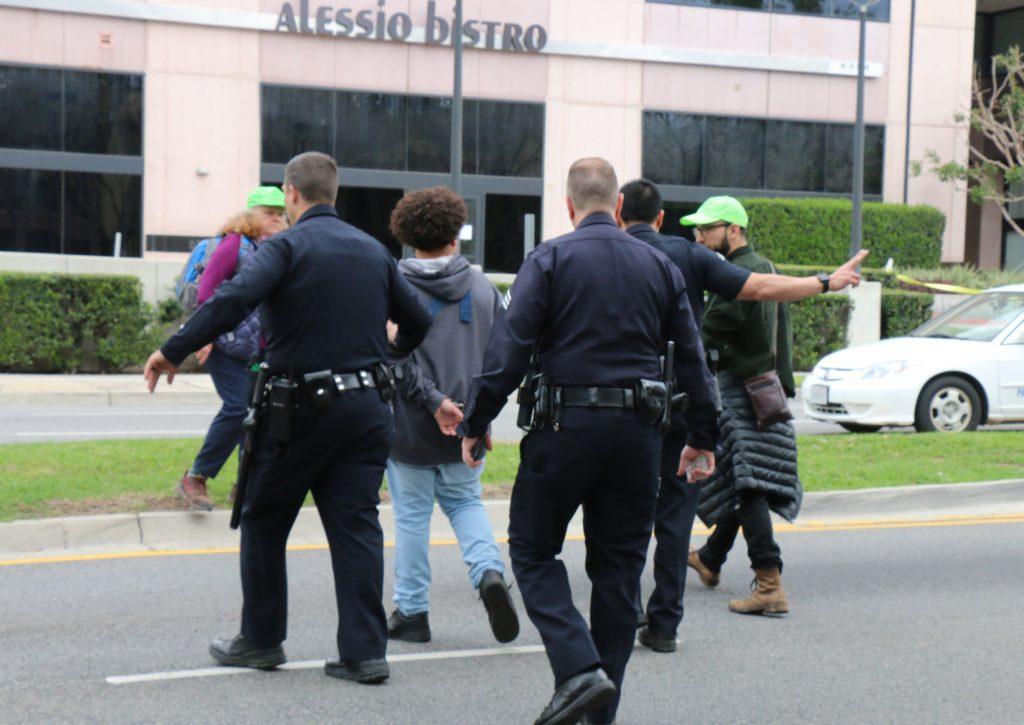 arrest (17)